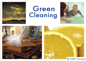 Eco Friendly Cleaning - Brooklyn