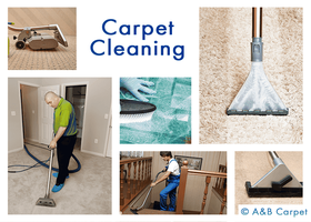 Carpet Cleaning - Beverly Square West 11226